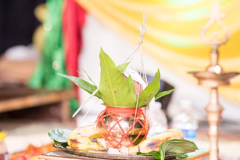 Sriram-Manasa-86.jpg