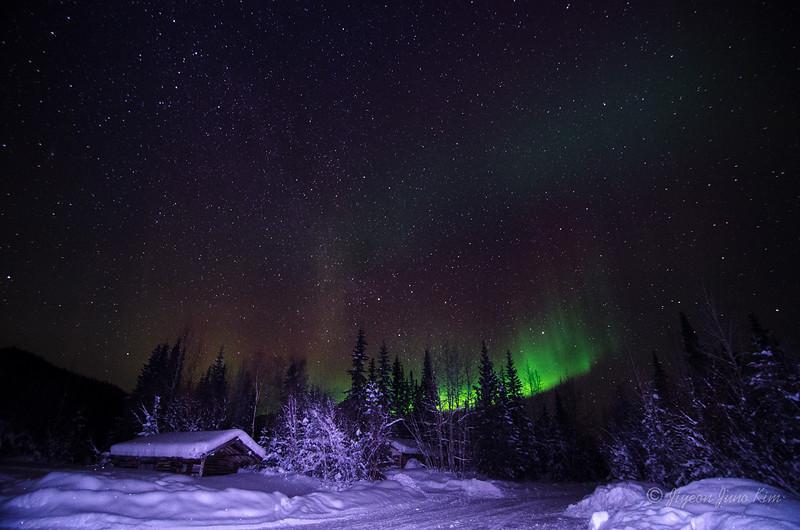 USA-Alaska-Wiseman-Aurora-2725.jpg