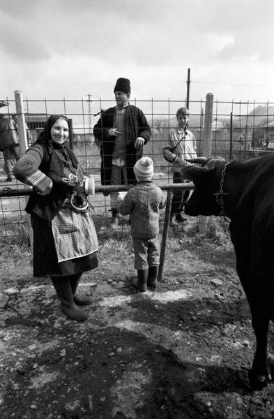 Romania-1993-R1-034.jpg