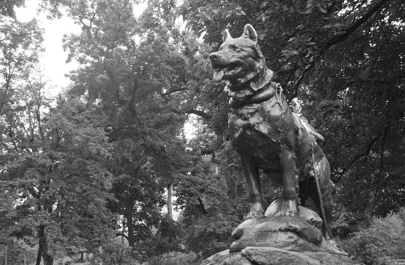 Balto the Sled Dog, In Central Park