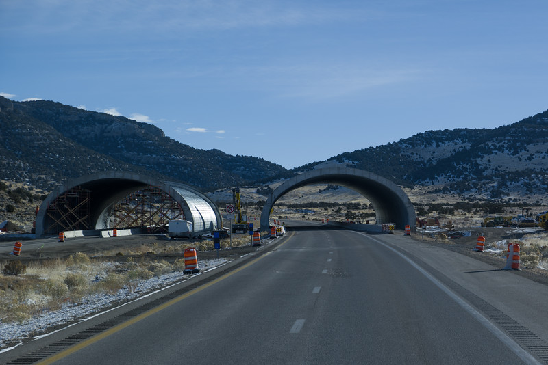 Wildlife Land Bridge Construction