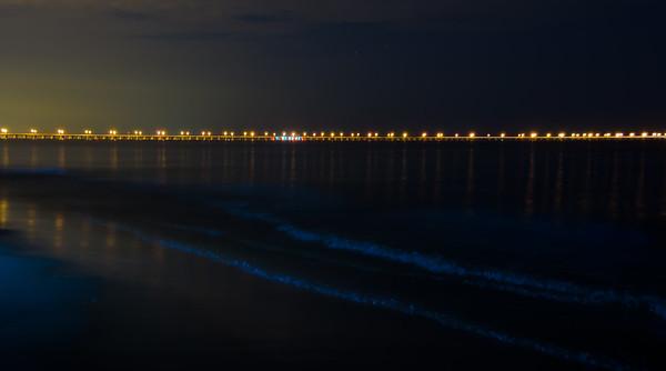 Blue Algae Virginia Beach
