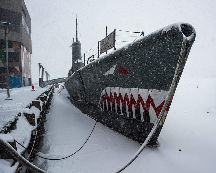 2015-02-21-Inner-Harbor-Blizzard-Torsk.jpg