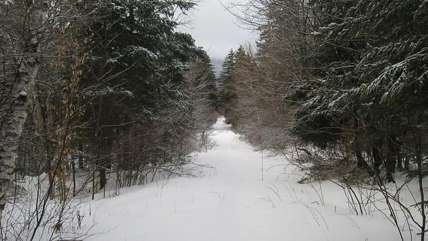Mt. Cabot, Jan. 27, 2012
