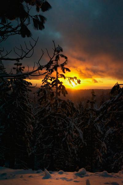 Yosemite Sunset II NEC_DSC6800 - Version 2.jpg