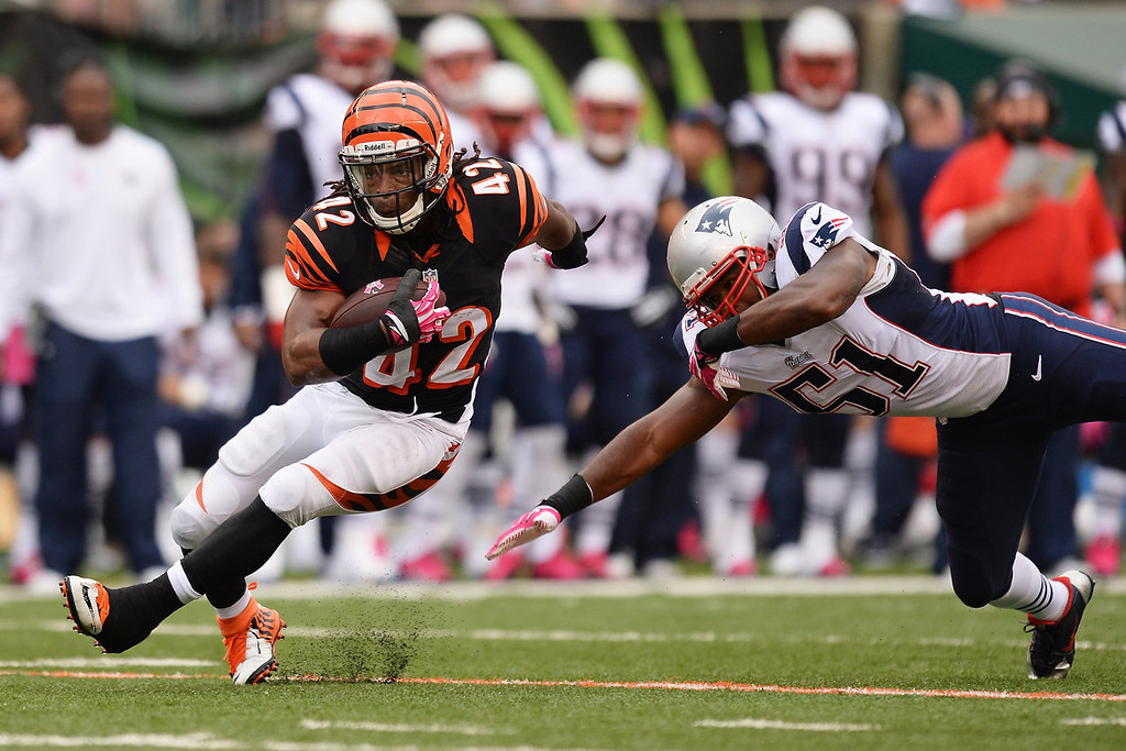 . BenJarvus Green-Ellis #42 of the Cincinnati Bengals breaks a tackle attempt from Jerod Mayo #51 of the New England Patriots in the first quarter while gaining yardage at Paul Brown Stadium on October 6, 2013 in Cincinnati, Ohio.  (Photo by Jamie Sabau/Getty Images)