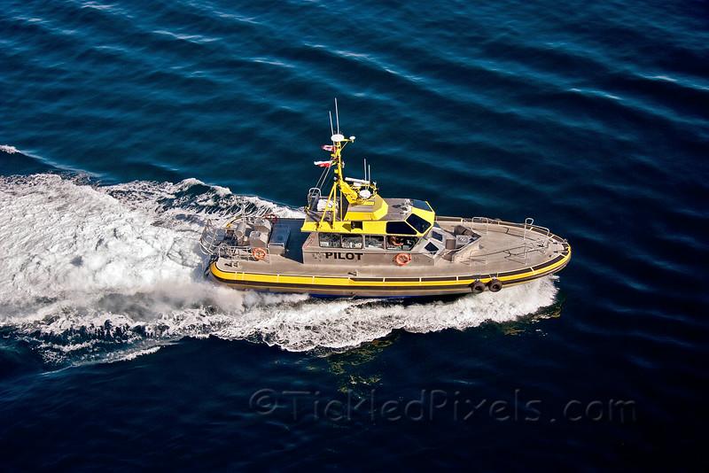 Pilot Boat 'Pacific Scout'