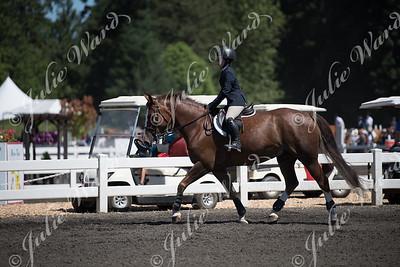 000 Equitation Challenge