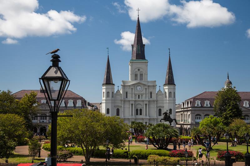 New Orleans-103.jpg