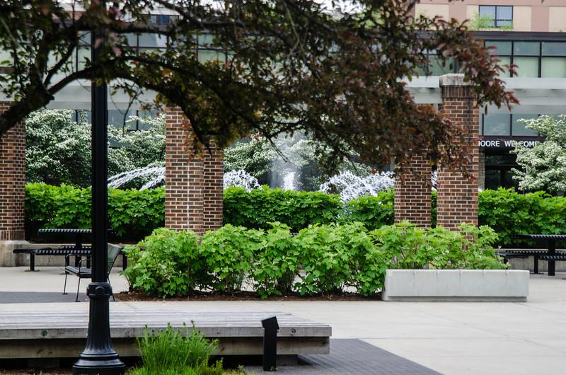 5-7-19 Campus Details_DSC8019.jpg