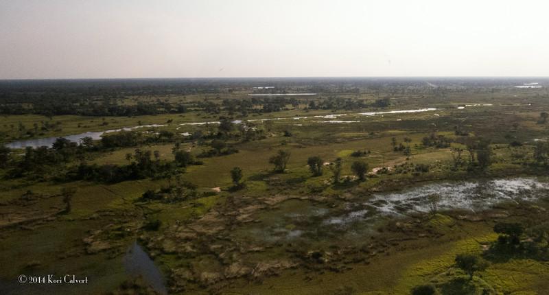 Botswana LandscapeK-3.jpg