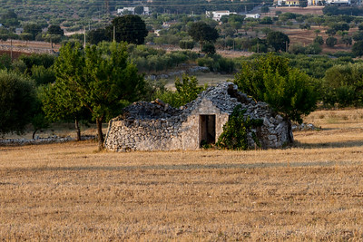 14.08.2015 // Cisternino