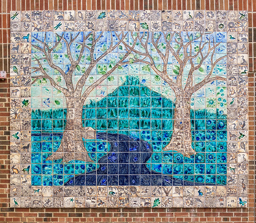OHC Mosaic