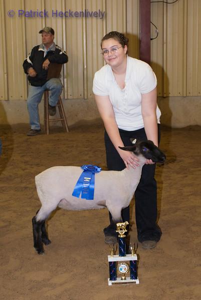 2010-09-27 Sheep 1100-1200