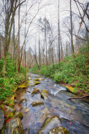 Asheville and Great Smoky Mountains National Park