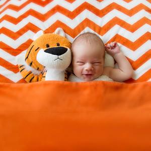 Calvin G Newborn