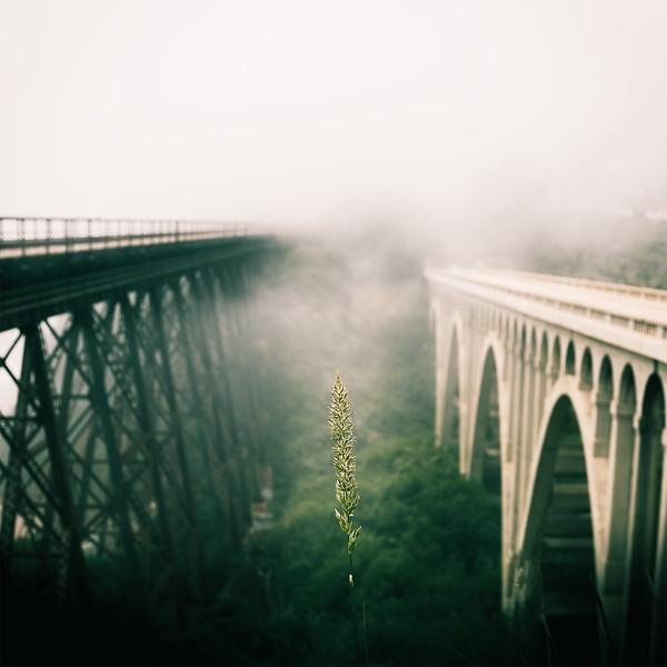 Bridge LG.jpg