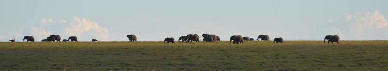 East Africa Safari 166.jpg