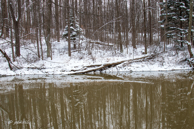 1-30-17.  A trip to Indian Hollow to catch the effects of the snow.  Snowy reflections in the Black  River.