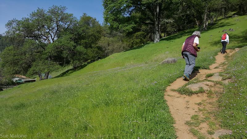 Hiking Yuba State Park (8 of 30).jpg