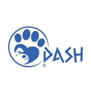 DASH - Dream of A Safe Haven