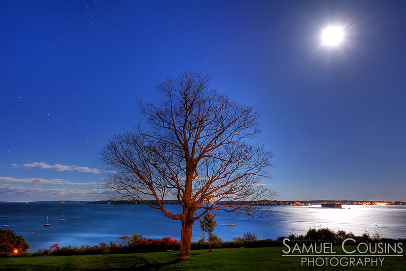 The moon above the large tree in Fort Allen Park. You can see Fort Georges in the back left in the reflected moonlight.