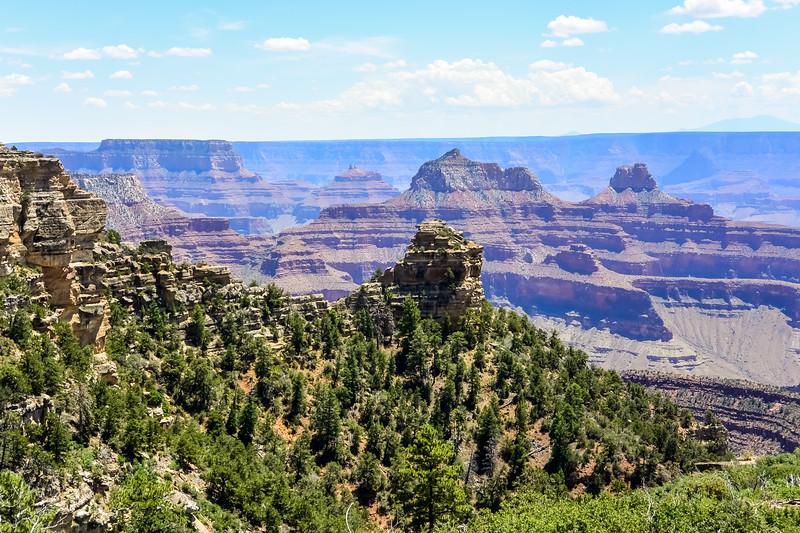 2019 Grand Canyon-224.jpg