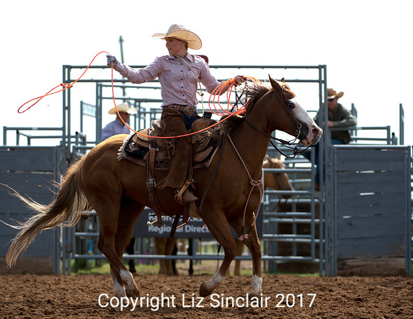 Oliver Saddle Shop Ranch Rodeo