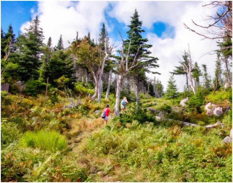 Cape Breton Hike (61)_F.jpg