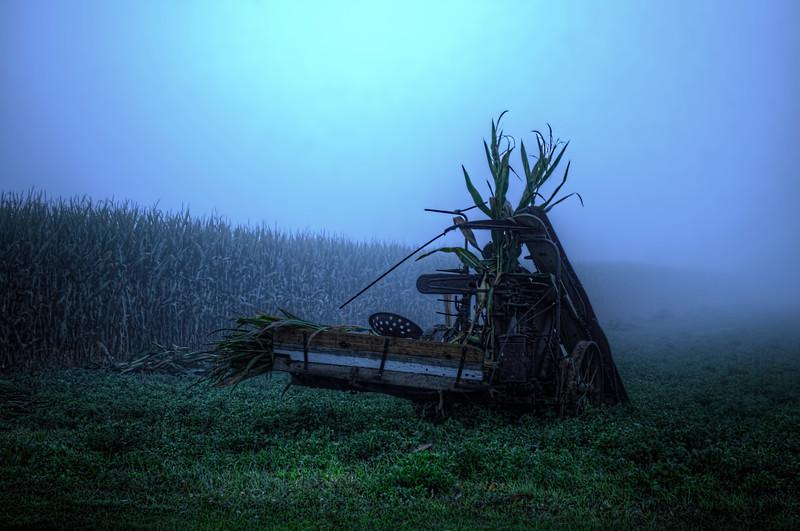 autumn 2014 - amish corn harvester in fog(p).jpg