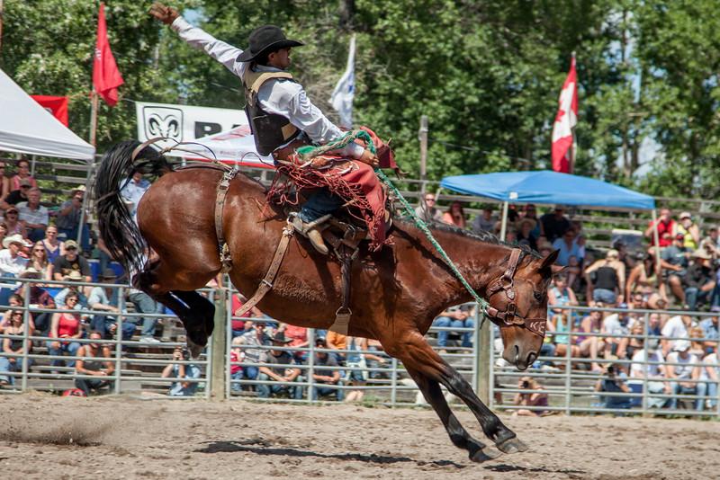 Augusta Rodeo, Montana, 2013