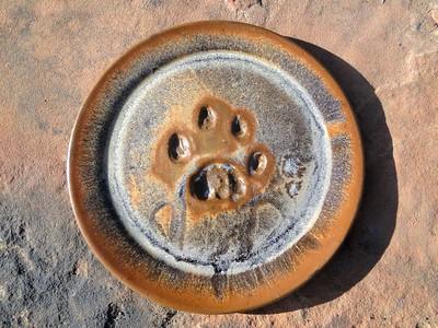 Mountain Lionware