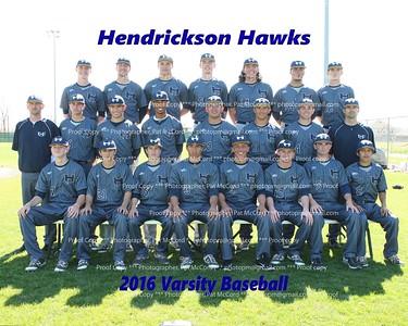 2016 Hawk Baseball