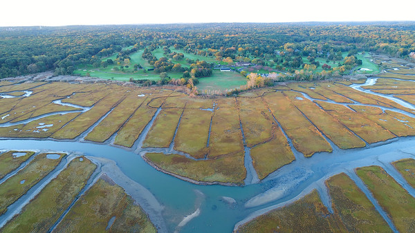 Crab Meadow Marsh Fall 2017
