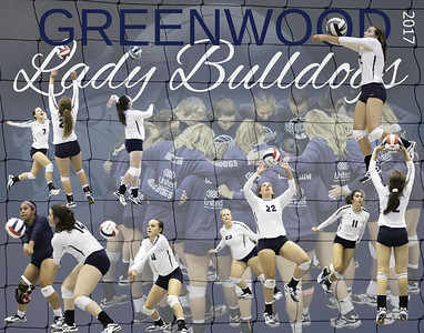 Greenwood  Volleyball     2017