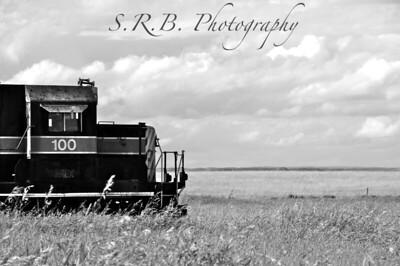 S.R.B. Photography Black&White