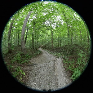 2020-08-18 McCormick's Creek State Park