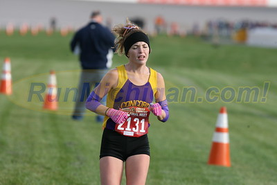 Finish Gallery 2, D4 GIRLS - 2017 MHSAA LP XC FINALS