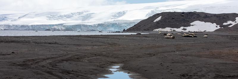 2019_01_Antarktis_01437.jpg