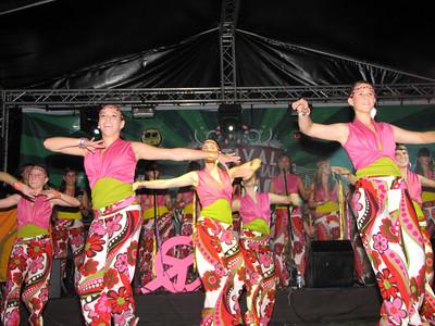 Gaitas Alcadia de Chacao ...2008