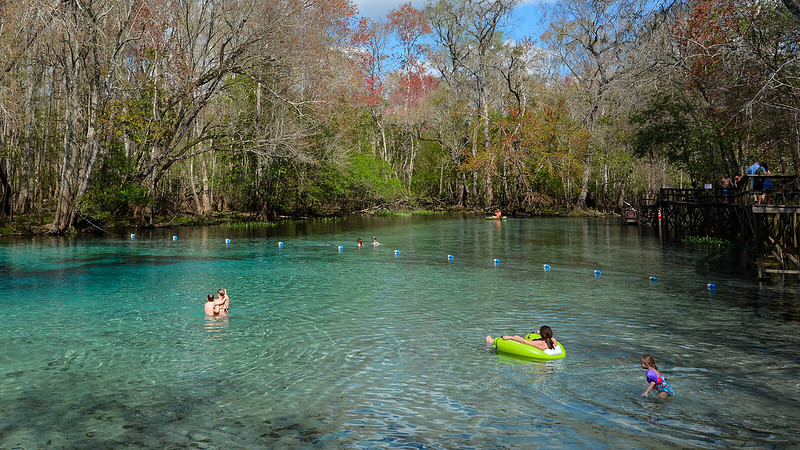 Swimmers in shallow turquoise water in a spring in the woods