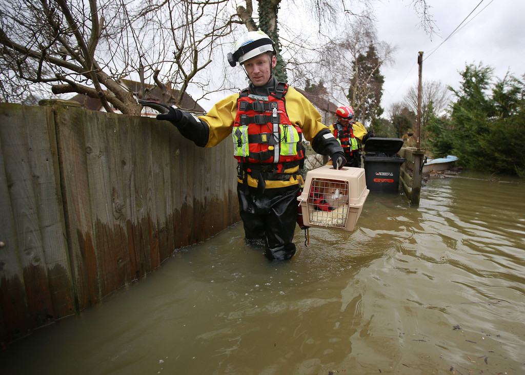 . Inspector Alan Barnes of the RSPCA water rescue team evacuates a pet cat called Mac from a house in a flooded area next to the river Thames on February 12, 2014 in Wraysbury, England.The Environment Agency contiues to issue severe flood warnings for a number of areas on the river Thames in the commuter belt west of London. With heavier rains forecast for the coming week people are preparing for for the water levels to rise.  (Photo by Peter Macdiarmid/Getty Images)