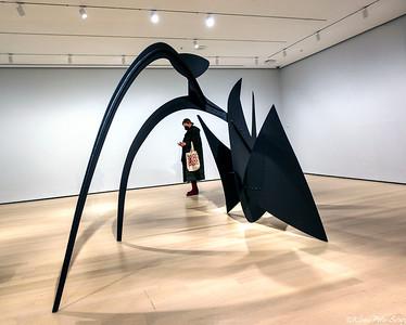 Visit March 2021 - Alexander Calder