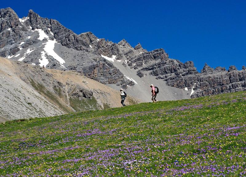 Col d'Izoard 03-07-16 (62b).jpg