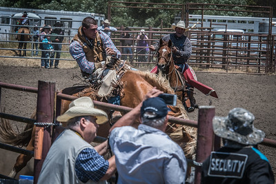 Russian River Rodeo 2017