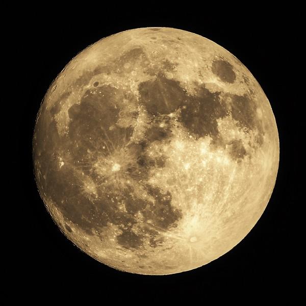 Golden Full Moon