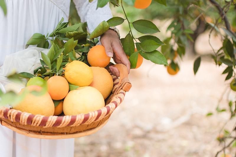 Citrus Styled Shoot (12 of 120).jpg