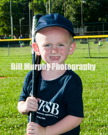 2016 3-4 Boys T-Ball Navy Team