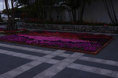 2/26/2011 Churaumi Aquarium