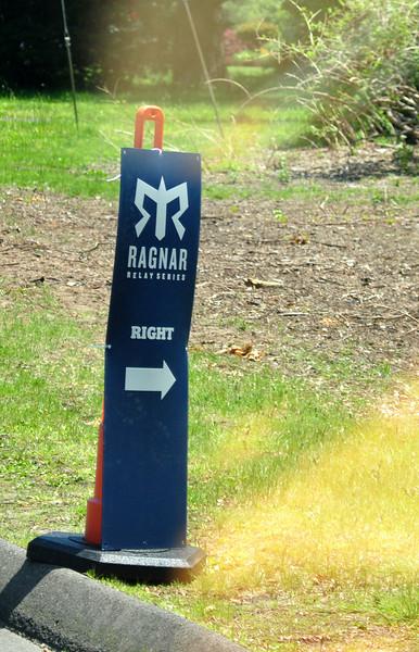 follow the signs.jpg